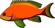 Anthias Consulting Ltd logo