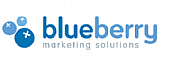 Blueberry Marketing Solutions logo