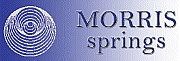 Morris Springs Ltd logo