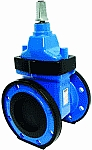 AEON Resilient Seated Gate Valve Type B, Water image