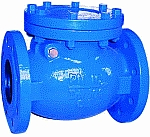 Swing Check Valve image