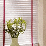 Venetian Blinds image