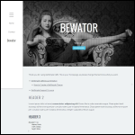 Screen shot of the Bewator Ltd website.