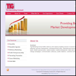 Screen shot of the TIG Marketing website.
